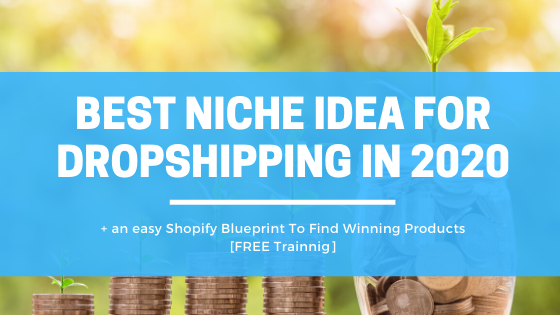 Best niche ideas for dropshipping in 2020